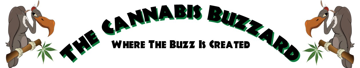 Cannabis Buzzard