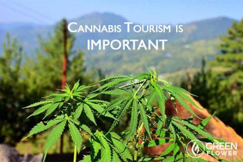 cannabis-tourism_content_600x400_option2-web