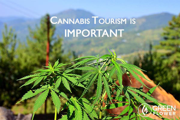 5 Overlooked Benefits of Cannabis Tourism