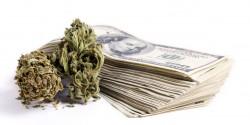 marijuanacannabiscash-250x125