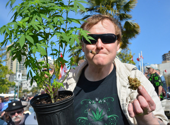 """Investors Should Be Encouraged by 3 New Marijuana Statistics From the """"Greenest"""" State"""